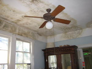 Property manager Charleston shows water damage