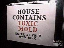 property with mold, property maintenance